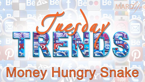 MONEY HUNGRY SNAKE – TUESDAY TRENDS