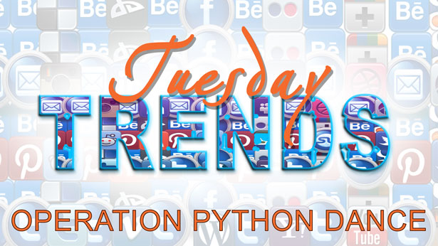 TUESDAY TRENDS – OPERATION PYTHON DANCE