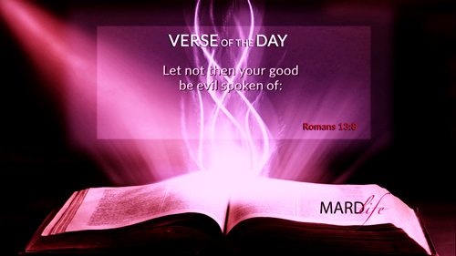 Verse Of The Day: Romans 14:16-19