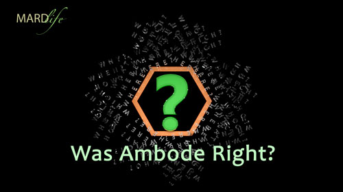 Was Ambode Right? – RHETORICS