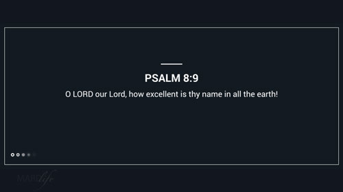 Verse Of The Day: Psalm 8:3-8