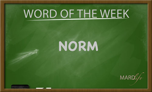 Norm (Word For The Week)
