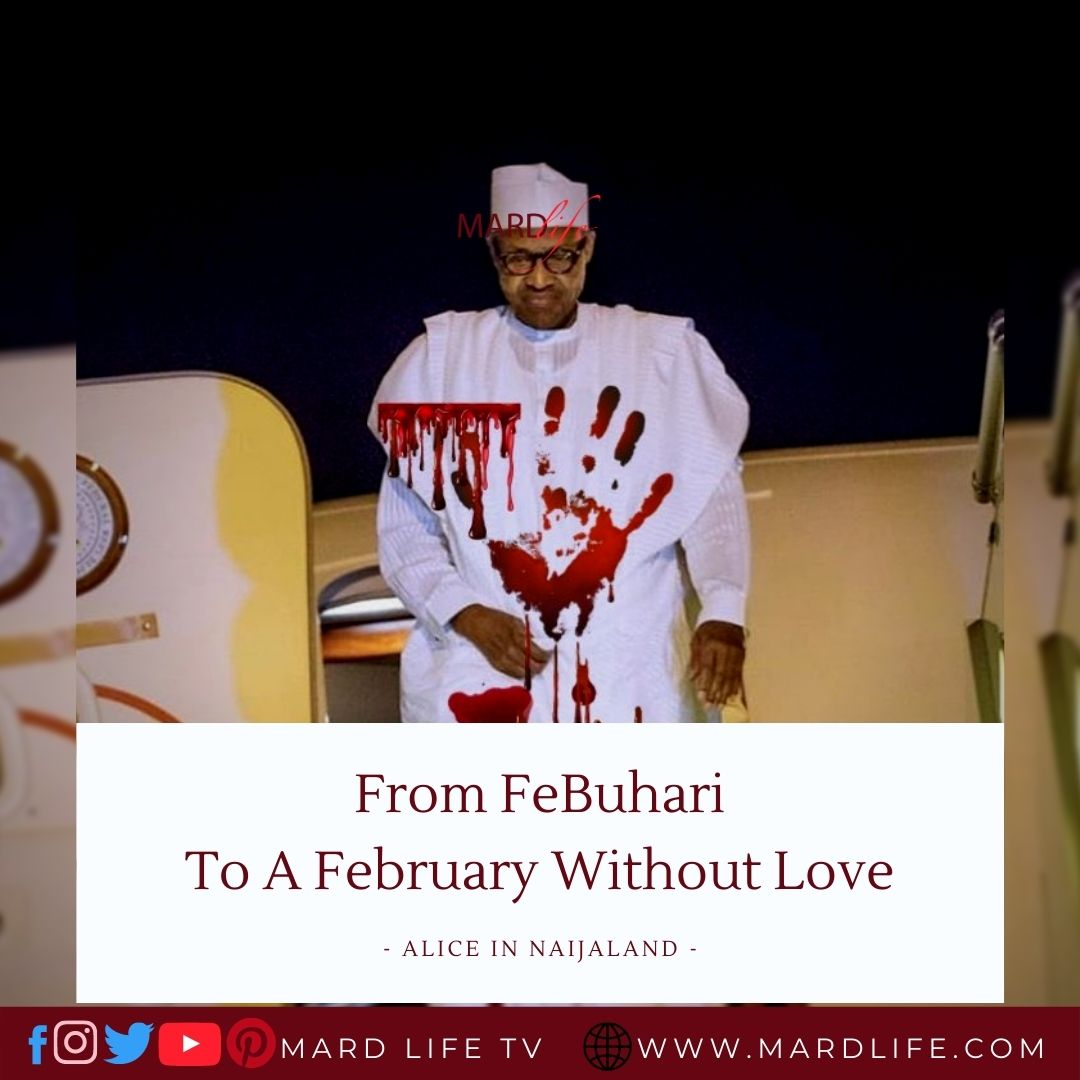 From FeBuhari To A February Without Love (Alice In Naijaland)