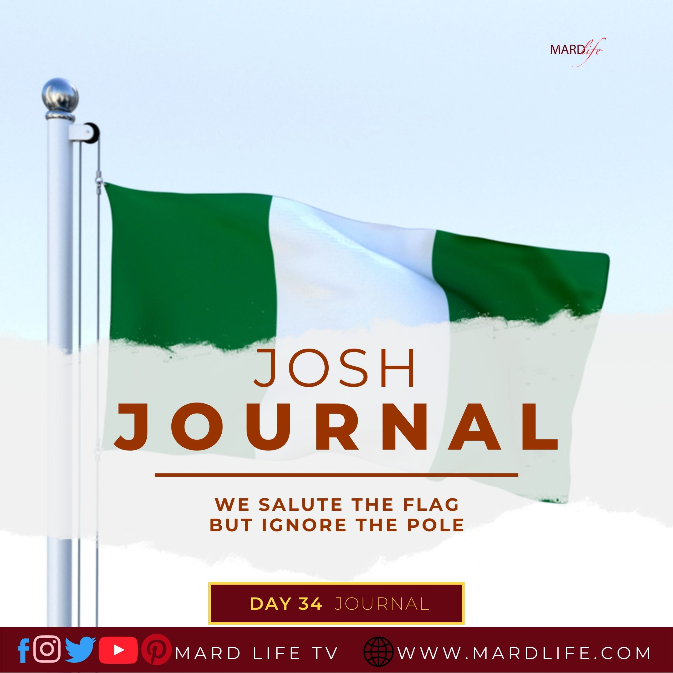 We Salute The Flag But Ignore The Pole – Josh Journal